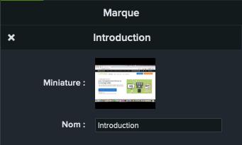 Capture d'écran du panneau des propriétés de Camtasia qui permet de nommer une marque, ici « Introduction ».