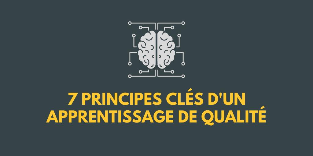 Dessin d'un cerveau pour illustrer les sept principes clés pour un enseignement en ligne de qualité